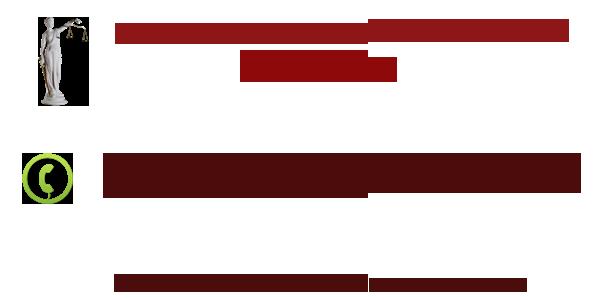 Проверить пенсию по снилс онлайн официальный сайт
